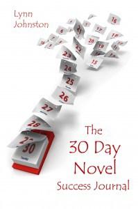 The 30 Day Novel Success Journal
